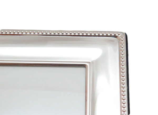 Silver-Plated Frame MS1868